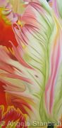 Abstract Tulip 3