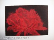 Cool Cystal Aquatint Etching Red