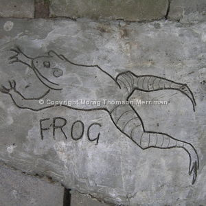 Cement drawing of frog in nursery school playground