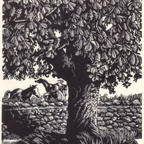 Horse Chestnut   by Beverley White