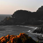 Sunset Heceta Head