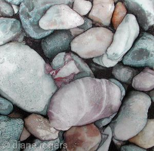 Pebbles and Pink Shell