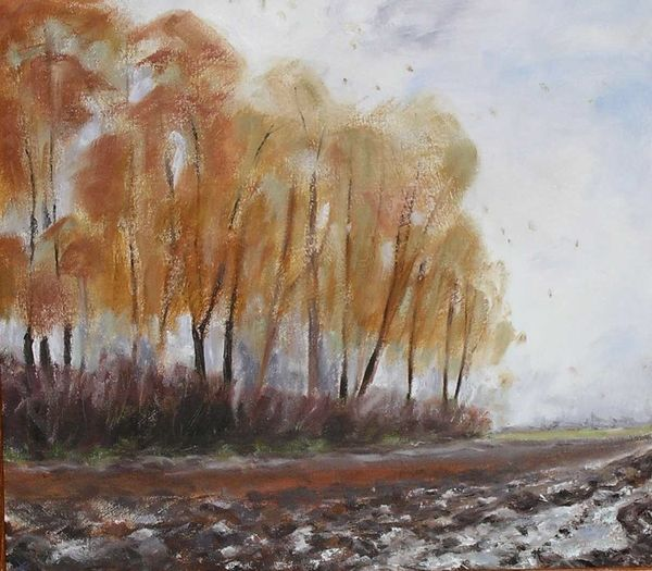 Autumn Trees with Ploughed Field
