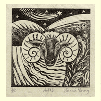 Aries (Mar21-Apr19)