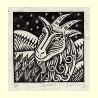 Capricorn (Dec22 - Jan19)