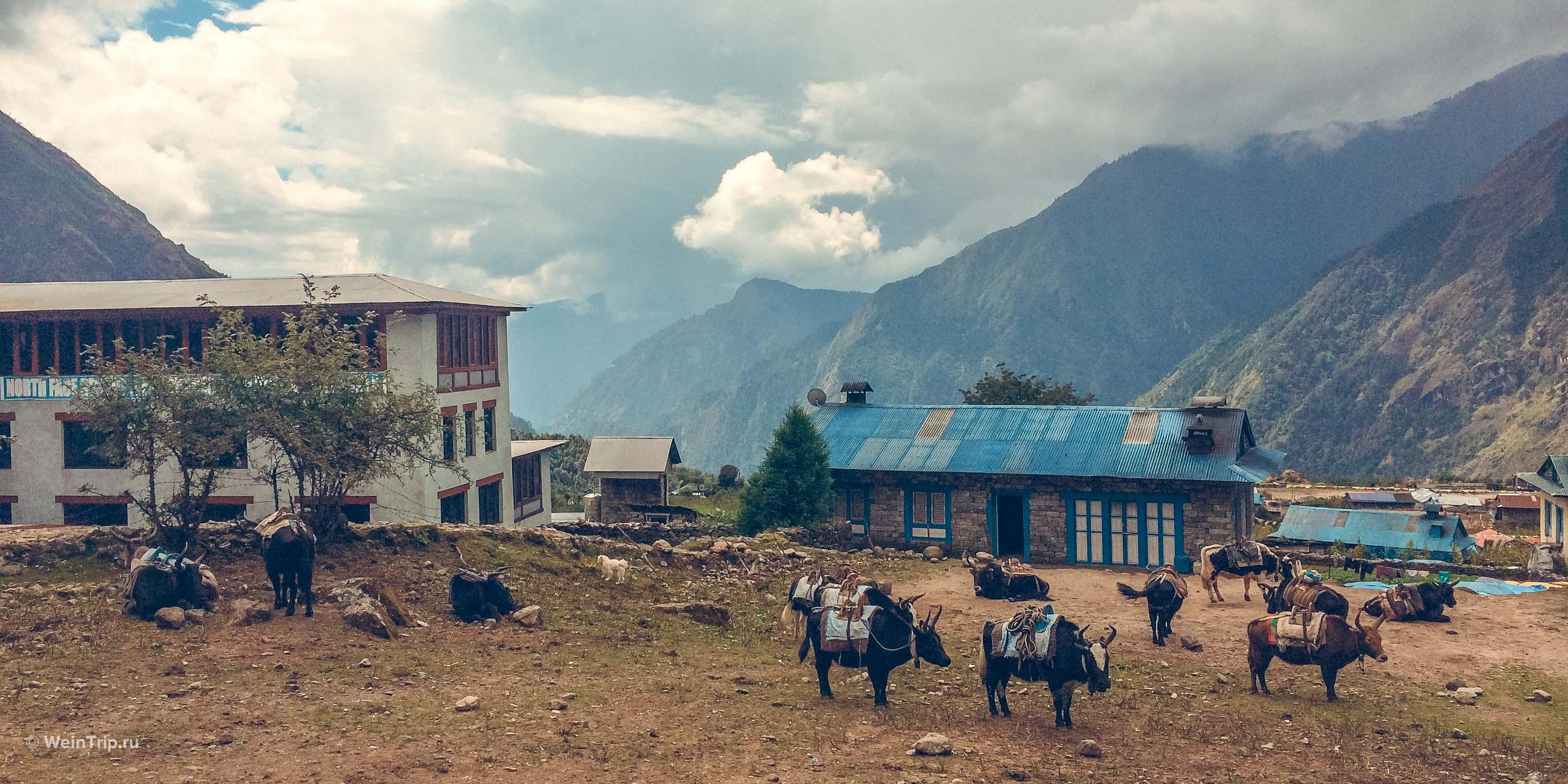 Начало пути. Треккинг в Непале к Базовому Лагерю Эвереста.