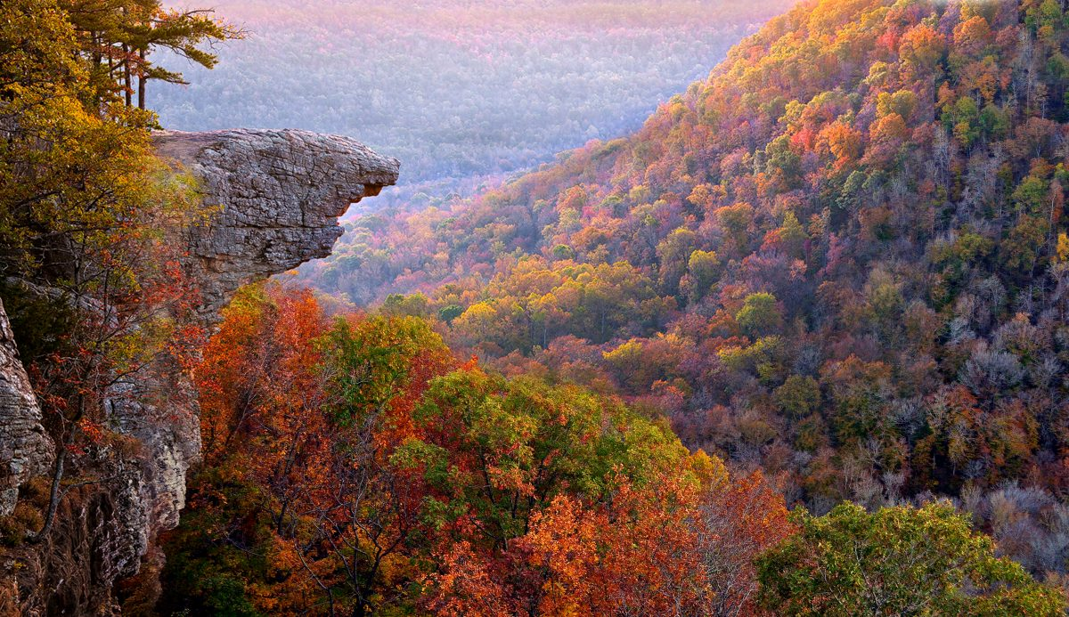 8 Trails in the Ozarks That Will Lead You to Unforgettable Places