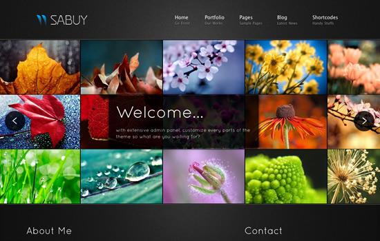 Sabuy - Premium Template for Portfolio Photography