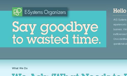 E-Systems Organizers