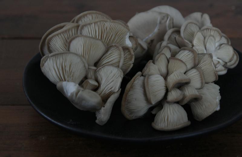 Gnocchi with Oyster Mushrooms & Sweet Peas (vegan)
