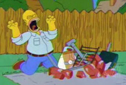 homer-bbq.jpg