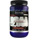 Unflavored - 300g + 100g FREE! - Ultimate Nutrition BCAA 12,000 Powder