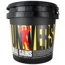 Cookies & Cream - 3.8 lbs - Universal Real Gains Protein Powder