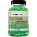 90 Capsules - LiveLong Nutrition Raspberry Ketones