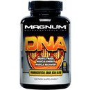 160 Capsules - Magnum Nutraceuticals DNA