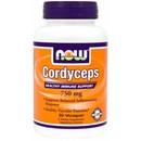 90 VCaps - NOW Cordyceps