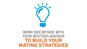 build-mating-strategies