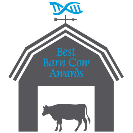 best barn cow awards