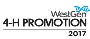 WESTGEN_4h-promo