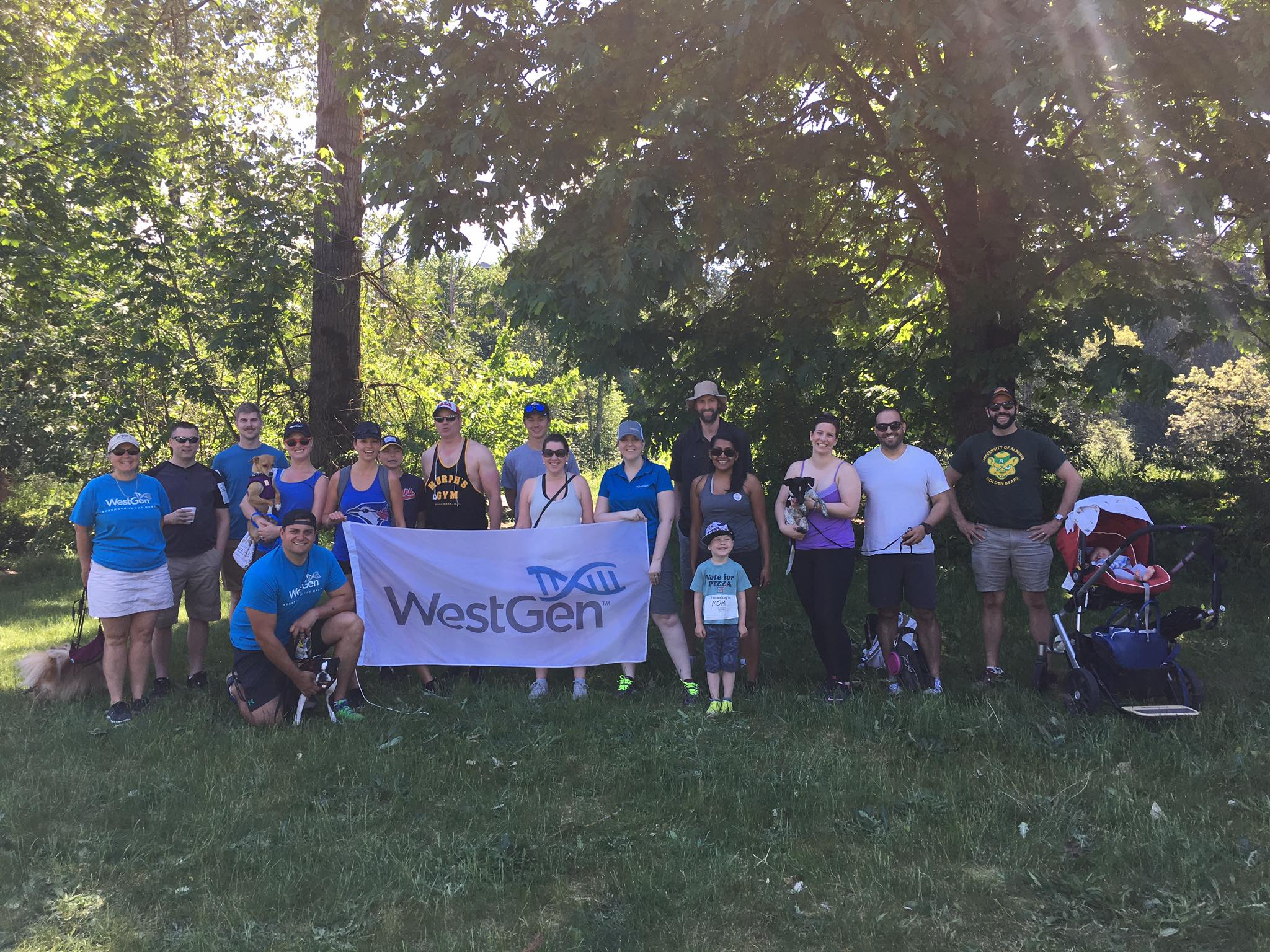 2016-Walk-for-MS-Team