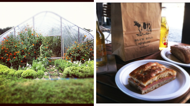 Farm ⇨ New american restaurant