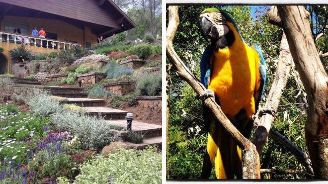 Garden ⇨ Zoo