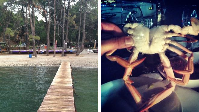 Campground ⇨ Seafood restaurant