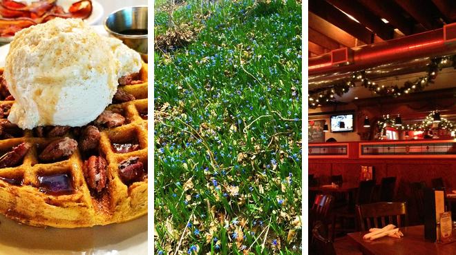 Breakfast spot ⇨ Trail ⇨ Bar