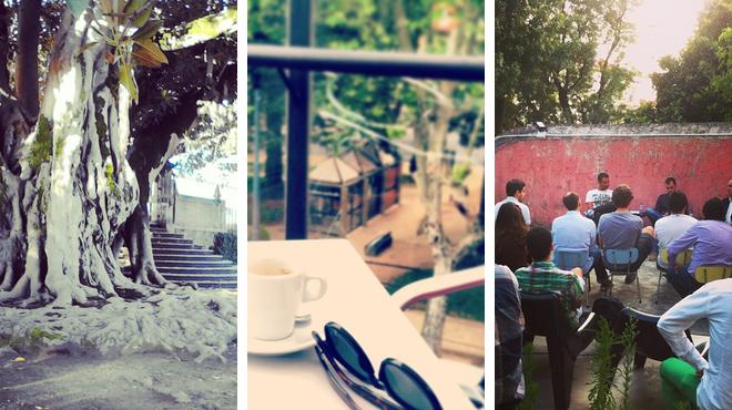 Garden ⇨ Café ⇨ Lounge