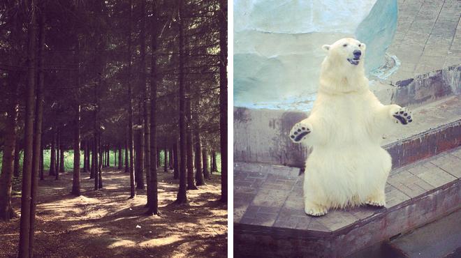 Park ⇨ Zoo