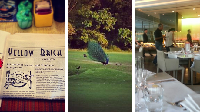 Restaurant ⇨ Golf course ⇨ Hotel bar