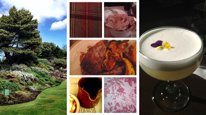 Botanical garden ⇨ Gastropub ⇨ Delicious Cocktails