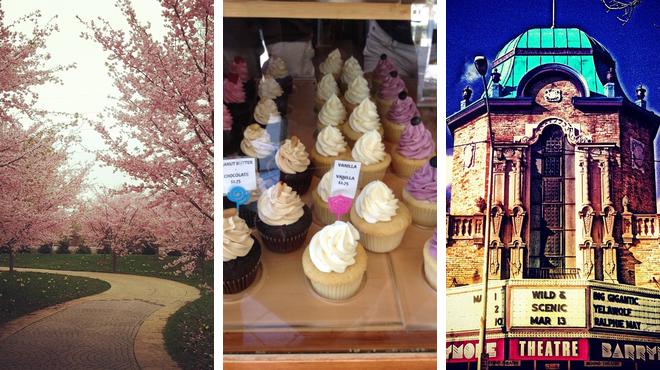 Garden ⇨ Cupcake shop ⇨ Music venue
