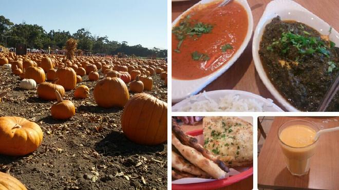 Farm ⇨ Indian restaurant