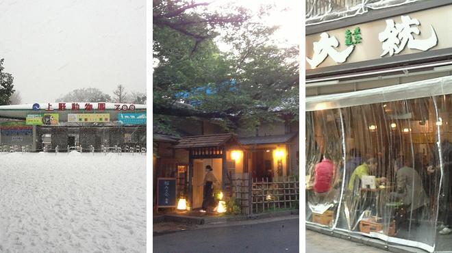 Zoo ⇨ Japanese restaurant ⇨ Sake bar