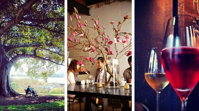 Discover planets & stars ⇨ Café ⇨ Wine bar