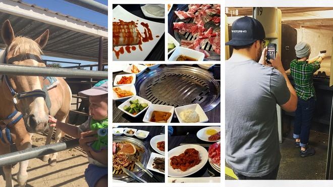 Farm ⇨ Korean restaurant ⇨ Have fun