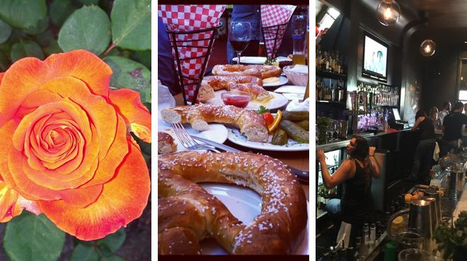 Park ⇨ German restaurant ⇨ Bar