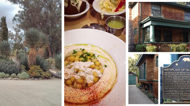 Garden ⇨ Mediterranean restaurant ⇨ Learn about history