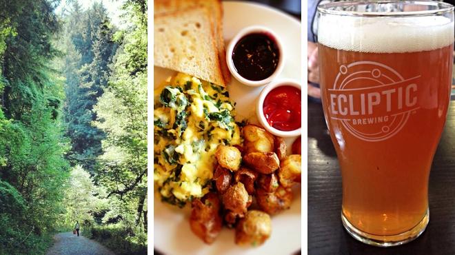 Trail ⇨ American restaurant ⇨ Brewery