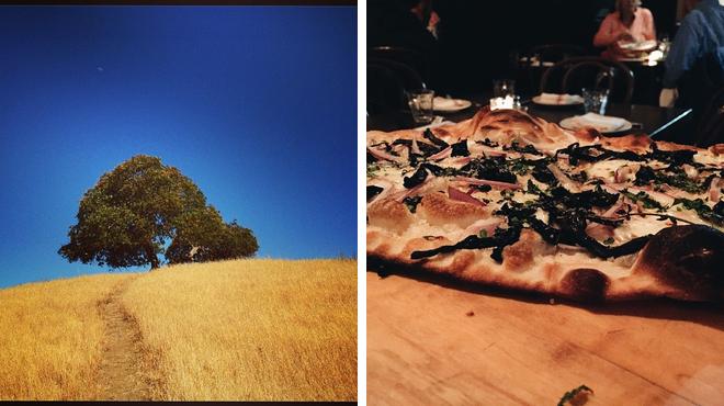 Park ⇨ Pizza place