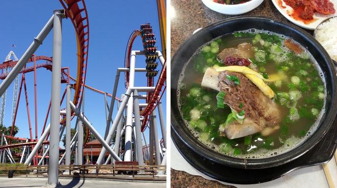 Theme park ride / attraction ⇨ Korean restaurant
