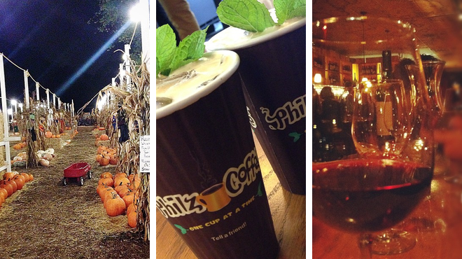 Garden ⇨ Coffee shop ⇨ Wine bar