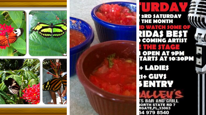 Garden ⇨ Mexican restaurant ⇨ Bar