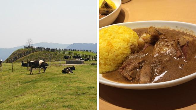 Farm ⇨ Asian restaurant