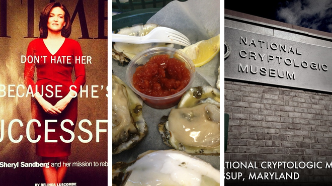 Mall ⇨ Seafood restaurant ⇨ Learn about history