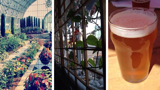 Garden ⇨ Korean restaurant ⇨ Brewery