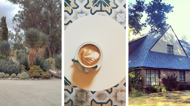 Garden ⇨ Coffee shop ⇨ Learn about history