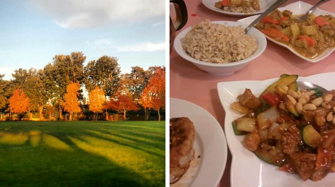 Park ⇨ Vegetarian / vegan restaurant