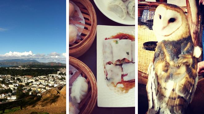 Park ⇨ Dim sum restaurant ⇨ Experience exhibits